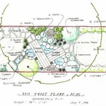 A Georgetown garden sketch