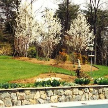 Mclean home in spring