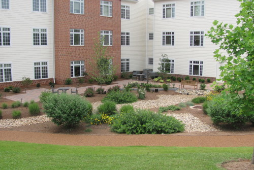 Dogwood Village: Healing garden completed