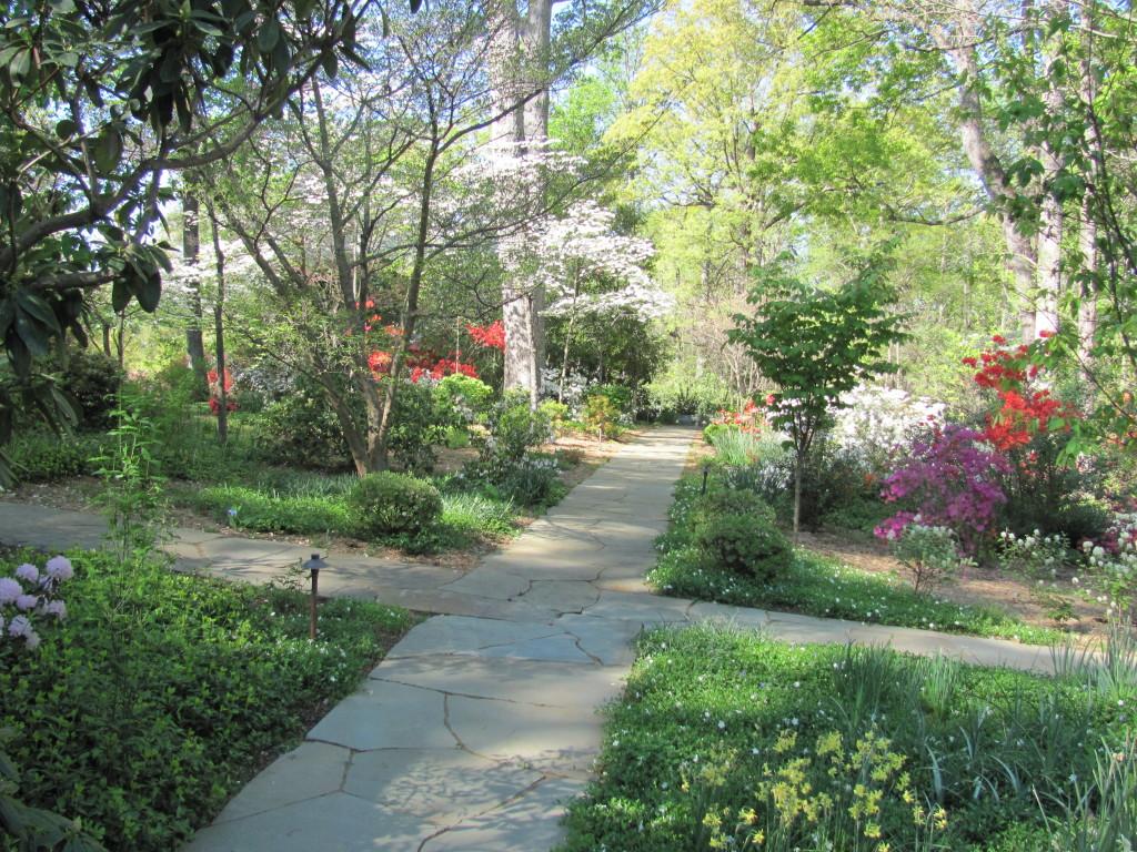 woodland garden walk image